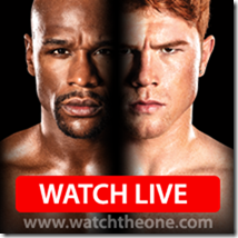 untitled Canelo vs. Dinero