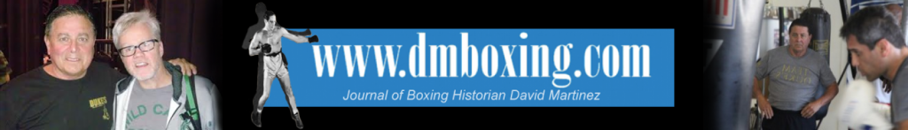 cropped-DMBoxingBanner.png