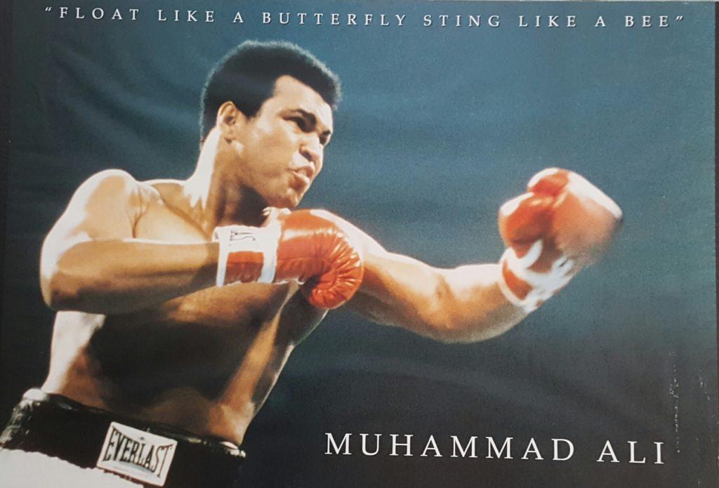 Ali part 4 lead
